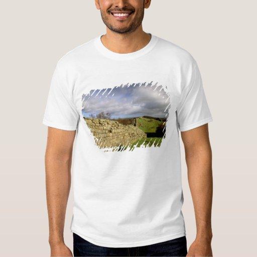 Europa, Inglaterra, Northumberland. Hadrian Polera