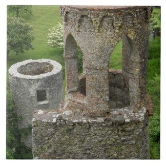 Europa, Irlanda, castillo de la lisonja. ESTA IMAG Azulejo Cuadrado Grande