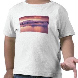 Europa, Islandia, laguna de Jokulsarlon Camisetas