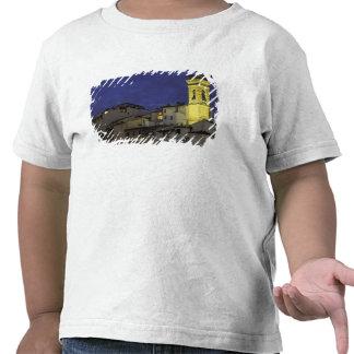 Europa, Italia, Florencia, detalle arquitectónico; Camisetas