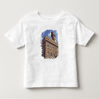 Europa, Italia, Florencia. El Plazzo medieval Playera