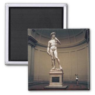 Europa, Italia, Florencia. El tamaño real de Imán Cuadrado