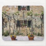 Europa, Italia, Monteriggioni. Una casa de piedra  Tapete De Ratones