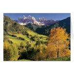 Europa, Italia, Santa Magdalena. El minúsculo Tarjetas
