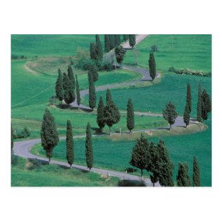 Europa, Italia, Toscana. Carretera con curvas Postales