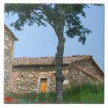 Europa, Italia, Toscana, chalet abandonado adentro Azulejo Cuadrado Grande