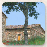 Europa, Italia, Toscana, chalet abandonado adentro Posavaso