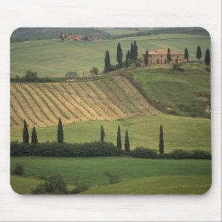 Europa, Italia, Toscana, d Orcia, Toscano de Val Alfombrilla De Ratones