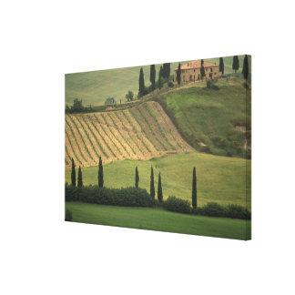 Europa, Italia, Toscana, d Orcia, Toscano de Val Impresión En Lona Estirada