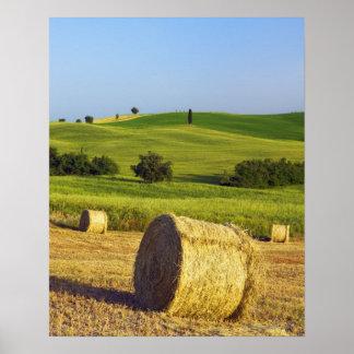 Europa, Italia, Toscana, d'Orcia de Val, Pienza - Póster