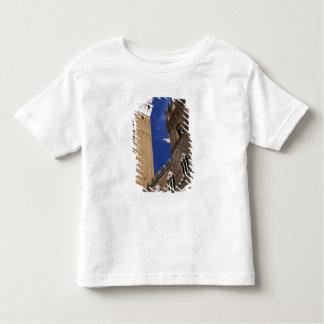 Europa, Italia, Toscana, Siena. Del de Torre T Shirts