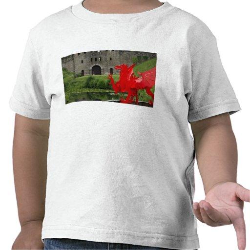 Europa, País de Gales, Cardiff. Castillo de Cardif Camiseta