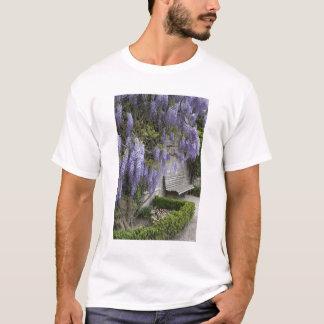 Europe, Austria, Salzburg Stadt, Salzburg, T-Shirt