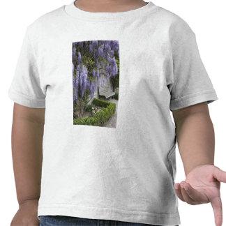 Europe, Austria, Salzburg Stadt, Salzburg, T Shirts