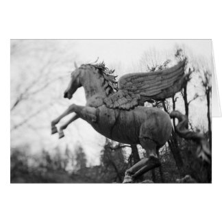 Europe, Austria, Salzburg. Winged horse statue, 2 Card