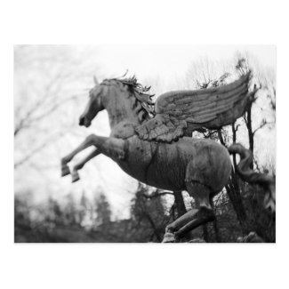 Europe, Austria, Salzburg. Winged horse statue, 2 Postcard