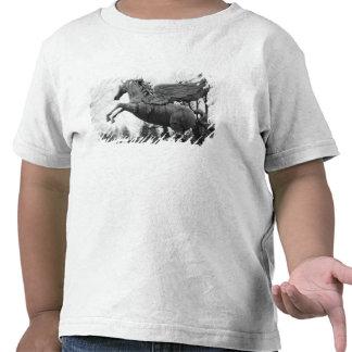 Europe, Austria, Salzburg. Winged horse statue, 2 T-shirts