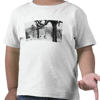 Europe, Austria, Salzburg. Winter, T Shirt
