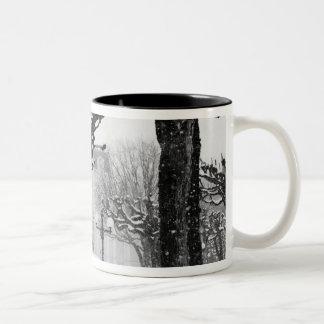 Europe, Austria, Salzburg. Winter, Two-Tone Coffee Mug