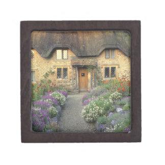 Europe, England, Chippenham. Early morning light Gift Box