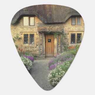Europe, England, Chippenham. Early morning light Guitar Pick