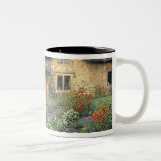 Europe, England, Chippenham. Early morning light Two-Tone Coffee Mug