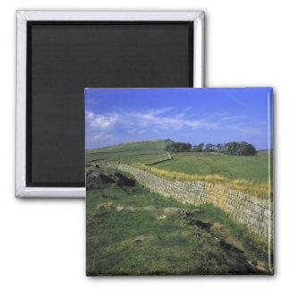 Europe, England, Hadrian's Wall. The stones of Fridge Magnet