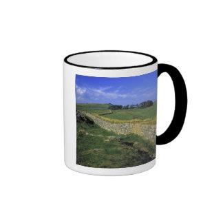 Europe, England, Hadrian's Wall. The stones of Ringer Coffee Mug