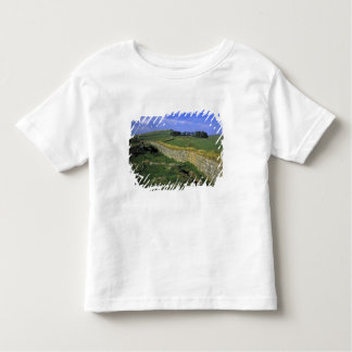 Europe, England, Hadrian's Wall. The stones of Toddler T-shirt