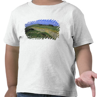 Europe, England, Hadrian's Wall. The stones of T Shirt