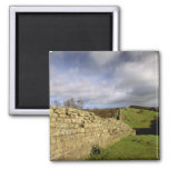 Europe, England, Northumberland. Hadrian's 2 Inch Square Magnet