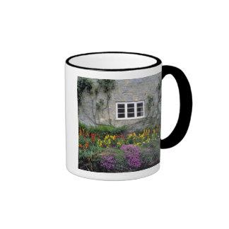 Europe, England, Teffont Magna. Flowers fill Ringer Coffee Mug