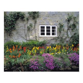 Europe, England, Teffont Magna. Flowers fill Photo Print