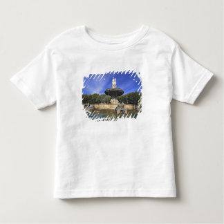 Europe, France, Aix-en-Provence. Fontaine de Toddler T-shirt