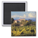 Europe, France, Bonnieux. Vineyards cover the 2 Inch Square Magnet