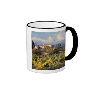 Europe, France, Bonnieux. Vineyards cover the Ringer Mug