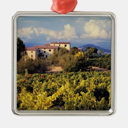 Europe, France, Bonnieux. Vineyards cover the Square Metal Christmas Ornament