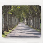 Europe, France, Cereste. Trees line this road Mouse Pad