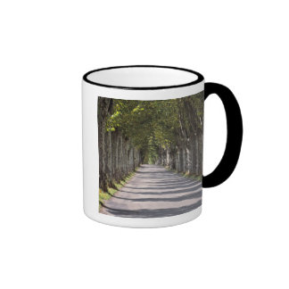 Europe, France, Cereste. Trees line this road Ringer Coffee Mug