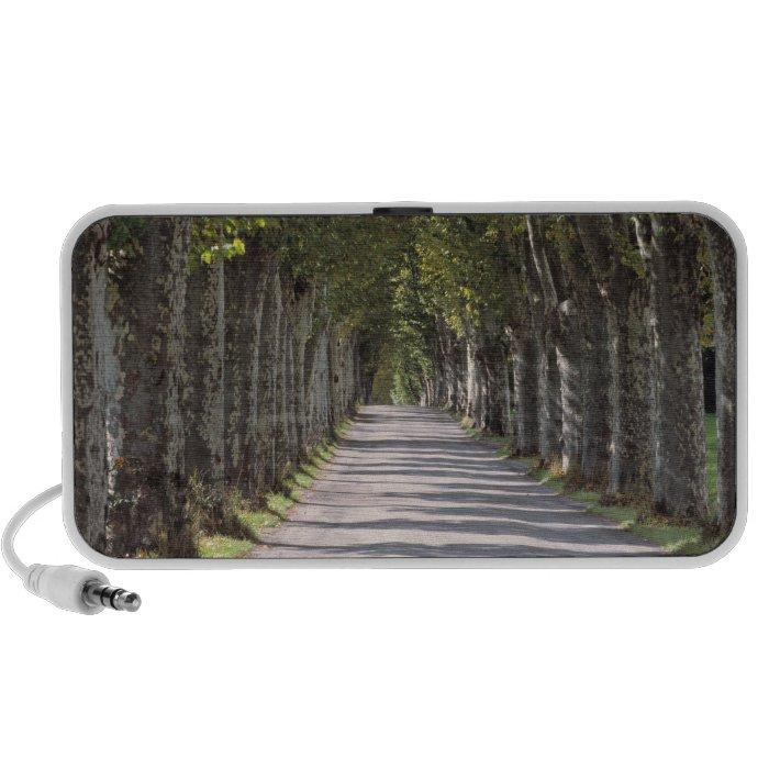 Europe, France, Cereste. Trees line this road Speaker