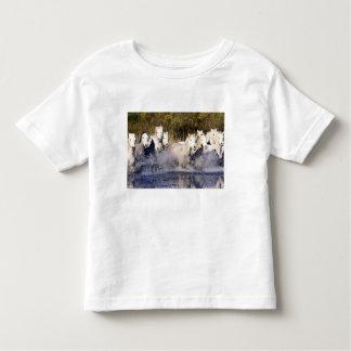 Europe, France, Ile del la Camargue. Camargue 2 Toddler T-shirt