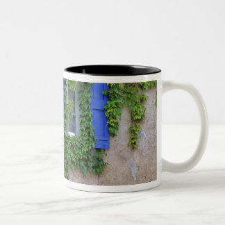 Europe, France, Lourmarin. Cascading ivy Two-Tone Coffee Mug