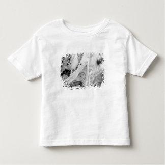 Europe, France, Paris. Detail: sculpture on T-shirt