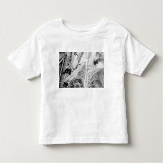 Europe, France, Paris. Detail: sculpture on Toddler T-shirt