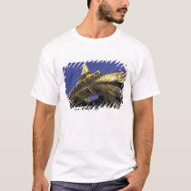 Europe, France, Paris, Eiffel Tower, evening 2 T-Shirt
