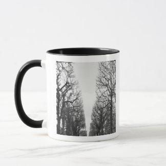 Europe, France, Paris. Winter trees, Marco Polo Mug