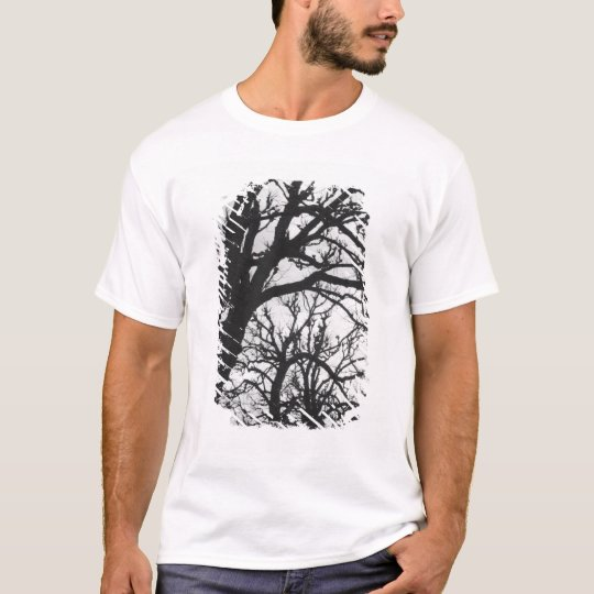 Europe, France, Paris. Winter trees, Marco T-Shirt