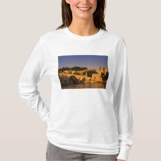 Europe, France, Provence, Avignon. Palais des 2 T-Shirt