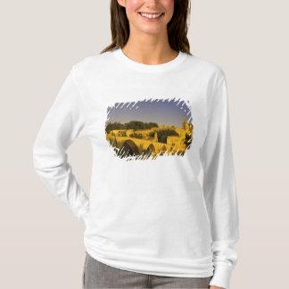 Europe, France, Provence, Avignon. Pont St, 2 T-Shirt