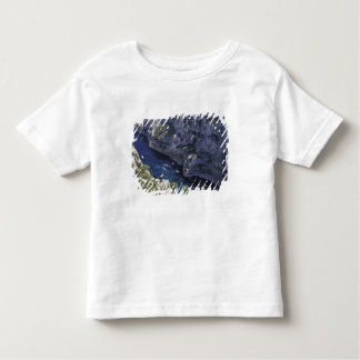 Europe, France, Provence, Calanques. Limestone T Shirt